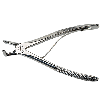 Small breed Right Angle Extraction Forceps