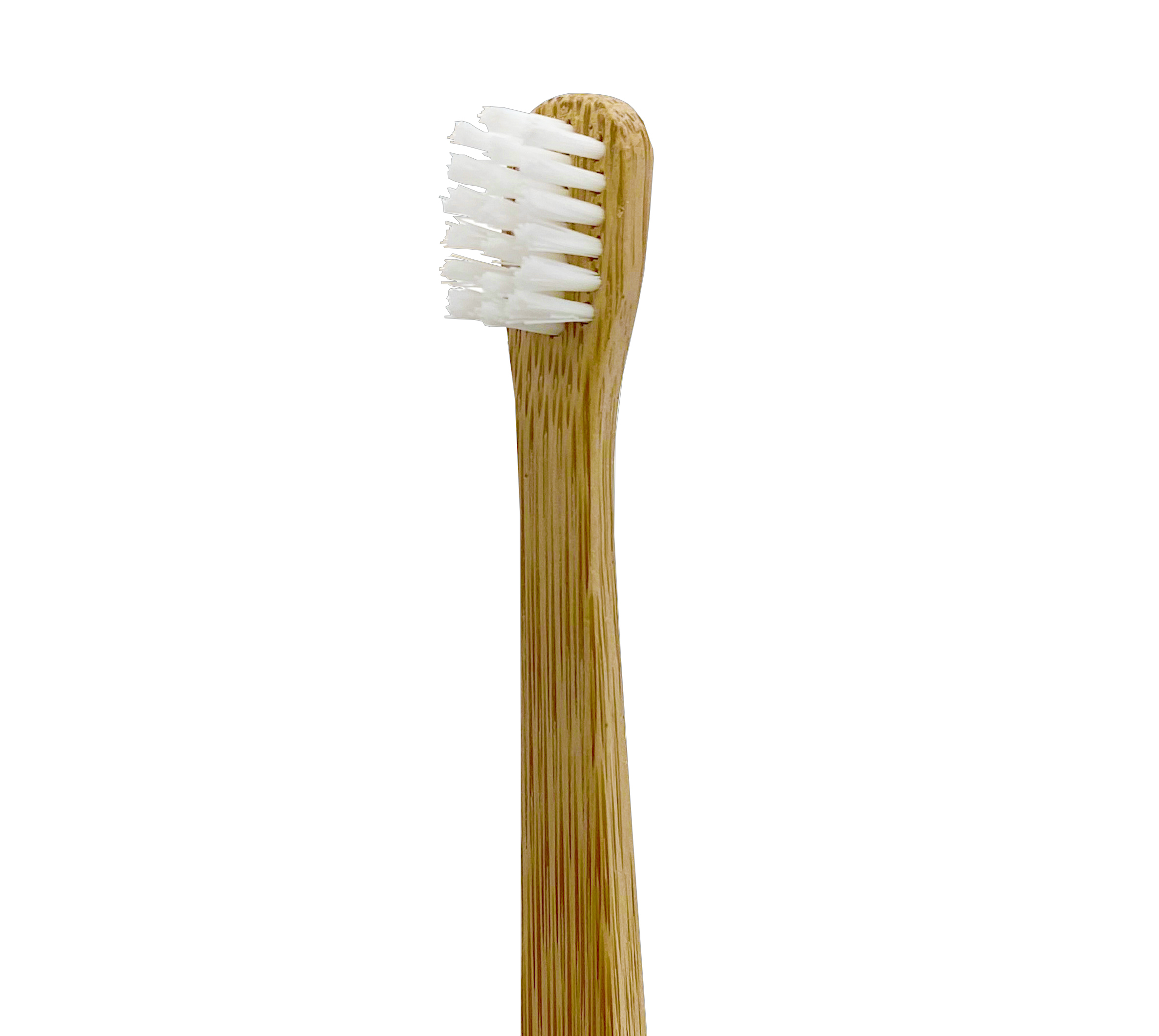 iM3 Bamboo Tooth Brush