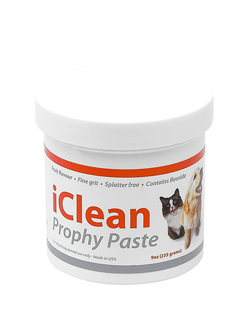 iClean Prophy Paste - Fine - 255g Tub